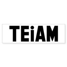 TEiAM Bumper Sticker