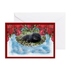 Bearcat Greeting Cards (Pk of 10)