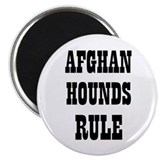 AFGHAN HOUNDS RULE 2.25&quot; Magnet (10 pack)