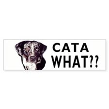cata what? Bumper Car Sticker