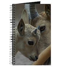 Goats Journal