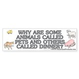 Why are some animals Bumper Sticker