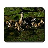 Baby Ducks 2 Mousepad