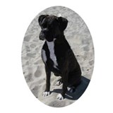 Black &amp;amp; White Boxer Oval Ornament