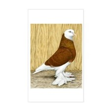 WOE Red Bald Pigeon Rectangle Decal