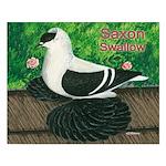 Saxon Swallow Pigeon Small Poster