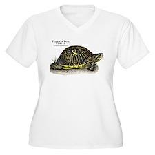 Florida Box Turtle T-Shirt