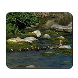 Baby Ducks 1 Mousepad