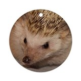 Rose Hedgehog Ornament (Round)