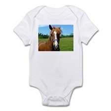 Bay horse close-up Infant Bodysuit