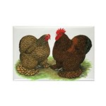 Cochin Pair Rectangle Magnet (100 pack)