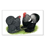 Cochin Couple Rectangle Sticker