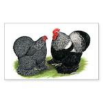 Cochin Couple Rectangle Sticker 50 pk)