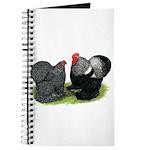 Cochin Couple Journal