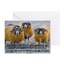 A Season of Peace Greeting Cards (Pk of 20)