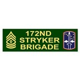 172nd Stryker Brigade<BR> First Sergeant