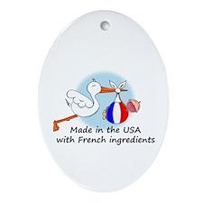 Stork Baby France USA Oval Ornament