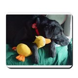 Cute Black lab Mousepad