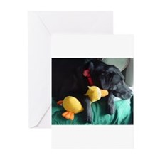Black Lab With Duck Greeting Cards