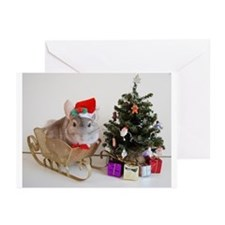 Funny Holiday chinchillas Greeting Cards (Pk of 20)