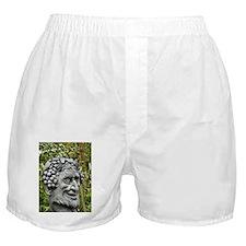 Dionysus Boxer Shorts