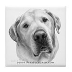 Max, Lab-Bull Terrier Mix Tile Coaster