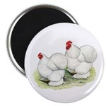 "Cochins White Pair 2.25"" Magnet (100 pack)"