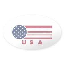 USA Vintage Oval Decal