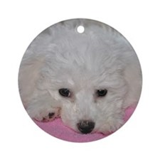 SASHA PUPPY FACE ORNAMENT (ROUND)