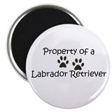 "Property of a Lab - 2.25"" Magnet (100 pack)"