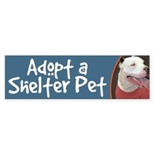 Adopt a Shelter Pet-White Pitbull Bumper Bumper Sticker