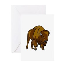 American Bison/Buffalo Greeting Card