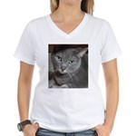 Gray Cat Love Women's V-Neck T-Shirt