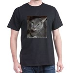 Gray Cat Love Dark T-Shirt