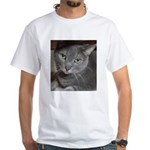 Gray Cat Love White T-Shirt