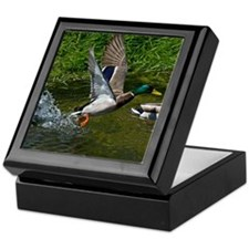 Mallard Take-off Keepsake Box