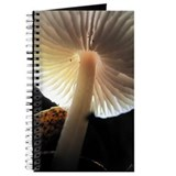 Mushroom Gills Backlit Journal