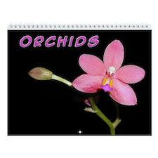 Orchid Wall Calendar