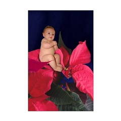 Poinsettia Flower Baby Posters
