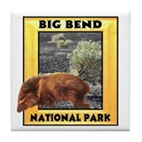 Big Bend National Park Tile Coaster
