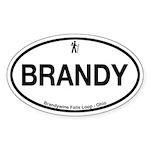 Brandywine Falls Loop