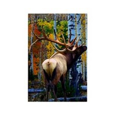 Bull elk,Rectangle Magnet