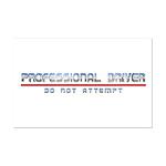 Professional Driver Mini Poster Print