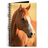 Horse portrait Journal