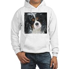 Cute King charles dog Hoodie
