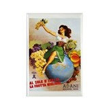 Adani Italian Fruit Magnet