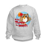 Owl 3rd Birthday Jumpers