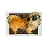 "Pekingese ""Tough Tiger Bailey"" my first dog... Rec"