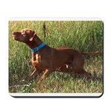 Field Vizsla Mousepad