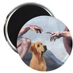 Creation/Labrador (Y) Magnet